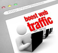 Lawn Care Website Traffic