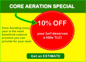 Core Aeration 2015